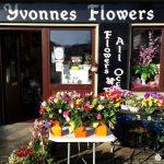 Yvonne's Flowers